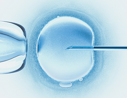 HumArGam: Legal aspects of the generation, genetic modification and use of pluripotent stem cell-derived human gametes